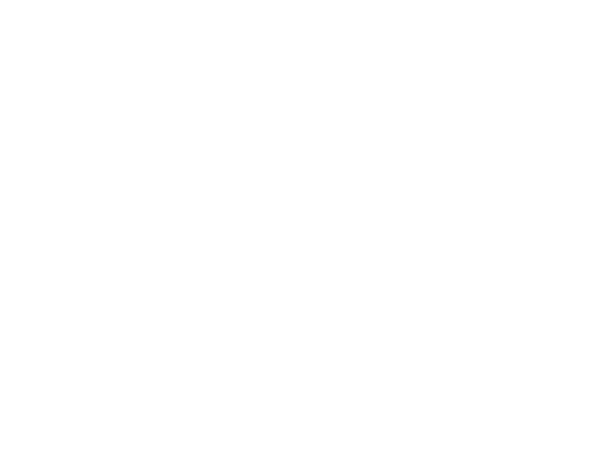 offering paintless dent removal for sports cars